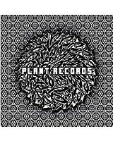 PLANT RECORDS V.A.BLACK