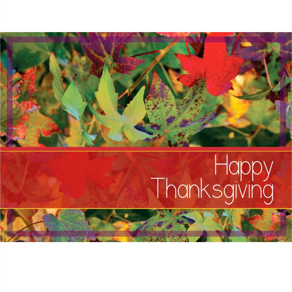 Thanksgiving boxed greeting cards thanksgiving wikii kristyandbryce Image collections