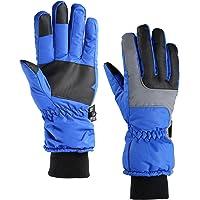 Fazitrip 3M Thinsulate Windproof & Waterproof Sport Men's Gloves (Blue)