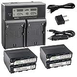 Kastar LCD Dual Smart Fast Charger & 2 x Battery for Sony NP-F970 NP-F960 F960 and DCR-VX2100 HDR-AX2000 FX1 FX7 FX1000 HVR-HD1000U V1U Z1P Z1U Z5U Z7U HXR-MC2000U MVC-FDR1 NEX-EA50UH FS100U FS700U (Tamaño: 1 dual charger + 2 batteries)