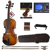Cecilio CVN-300 Solidwood Ebony Fitted Violin with D'Addario Prelude Strings, Size 3/4