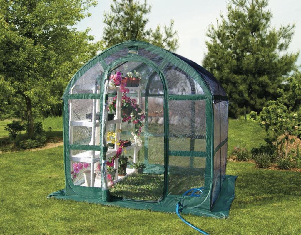 Flower House Greenhouse : Amazon flower house fhsp cl springhouse greenhouse