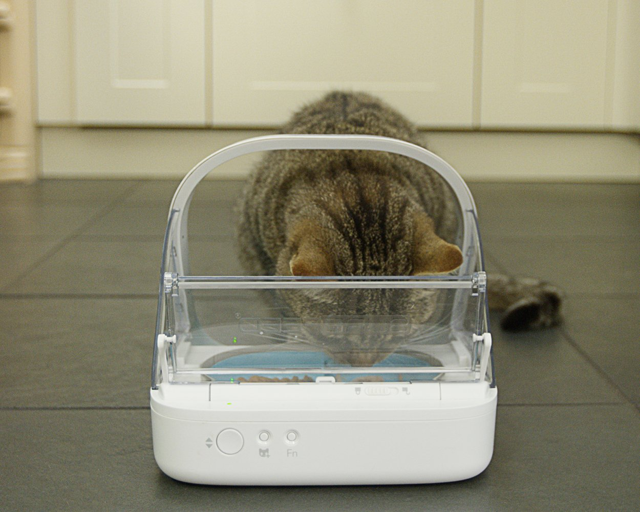 Read through these automatic cat feeder reviews before making a decision on what to buy.