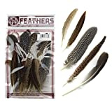 ZUCKER Assorted Natural Guinea and Pheasant Feathers - Multiple Pheasant Tail, Goose and Guinea Feathers for Fly Tying, Home Decor and Craft Supplies - 20pc - 4-10 inch (Color: 20pc, Tamaño: 20pc)
