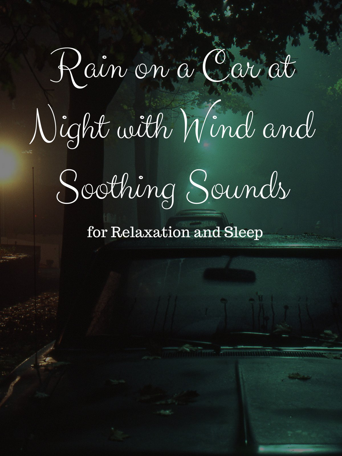 Rain on a Car at Night with Wind and Soothing Sounds for Relaxation and Sleep