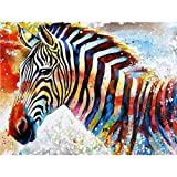 DIY Oil Painting, Paint by Number Kits - Colorful Zebra 16x20 Inch,Framed (Color: picture4, Tamaño: Framed)