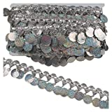 MELADY Pack of 10yards Pagoda Hanging Sequins Tassel Lace Dance Clothing Accessories Fringe Trim (Silver) (Color: silver)