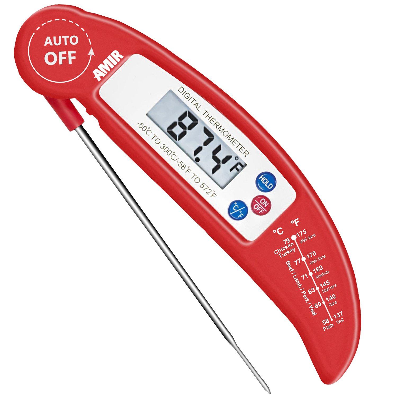 Kerntemperatur messgerät test