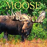 Moose 2015 Square 12X12