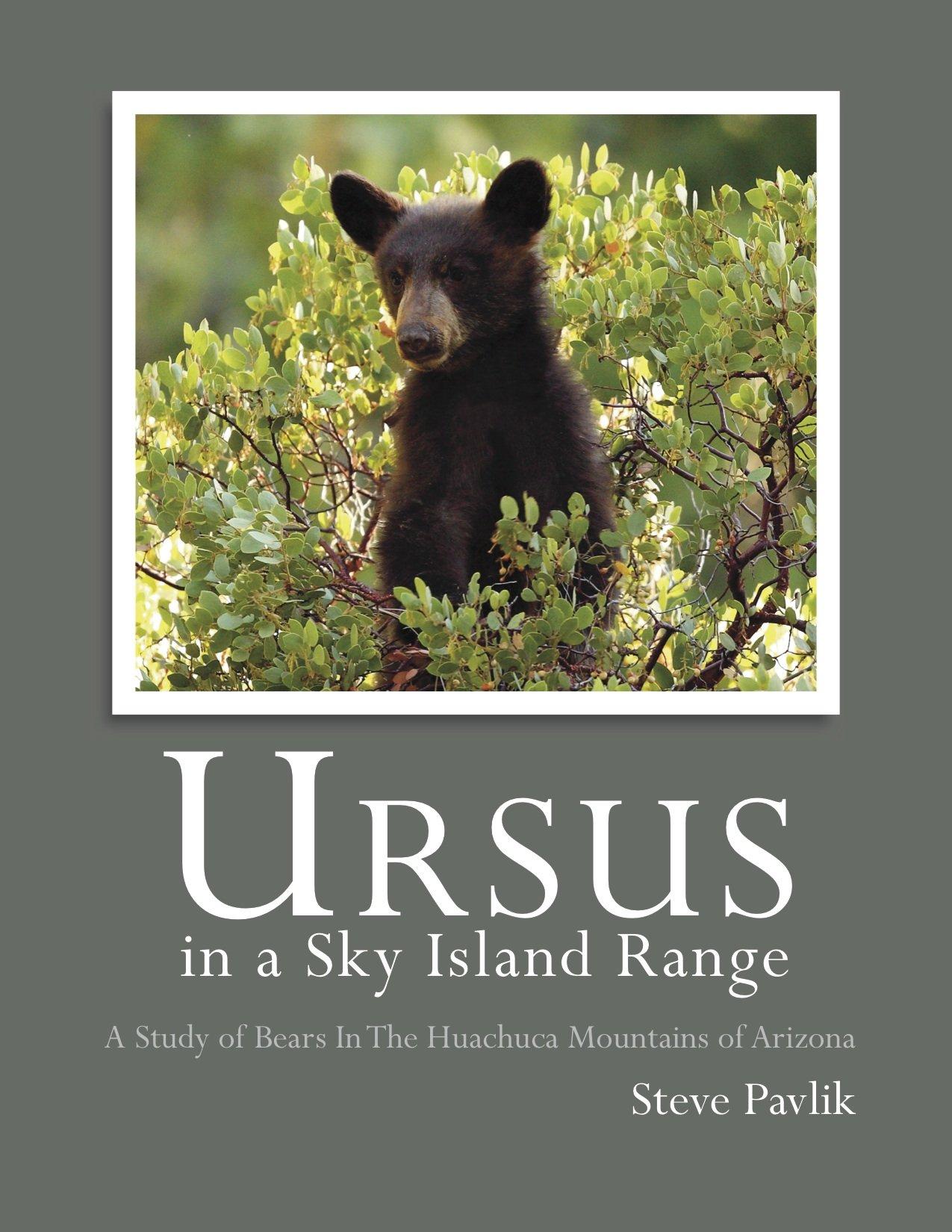 cub scout bear handbook 2017