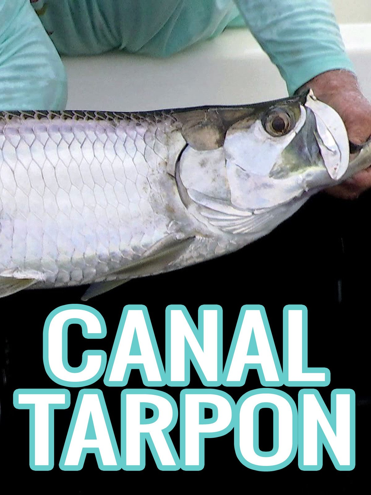 Clip: Canal Tarpon on Amazon Prime Instant Video UK