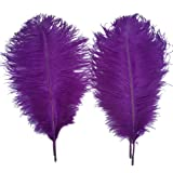 Sowder 5pcs Ostrich Feathers 16-18inch(40-45cm) Home Wedding Decoration(purple) (Color: Purple)