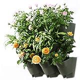Worth Garden 3-Pack Olive Green Self-Watering Vertical Garden Wall Planters