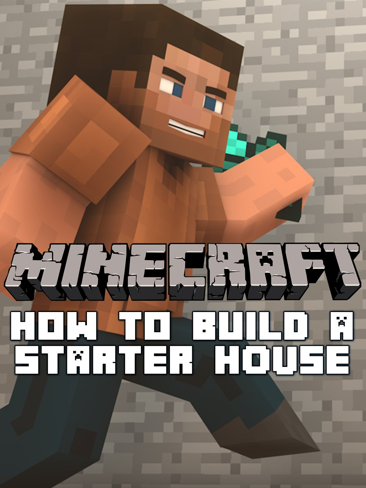 Clip: Minecraft: How to Build a Starter House