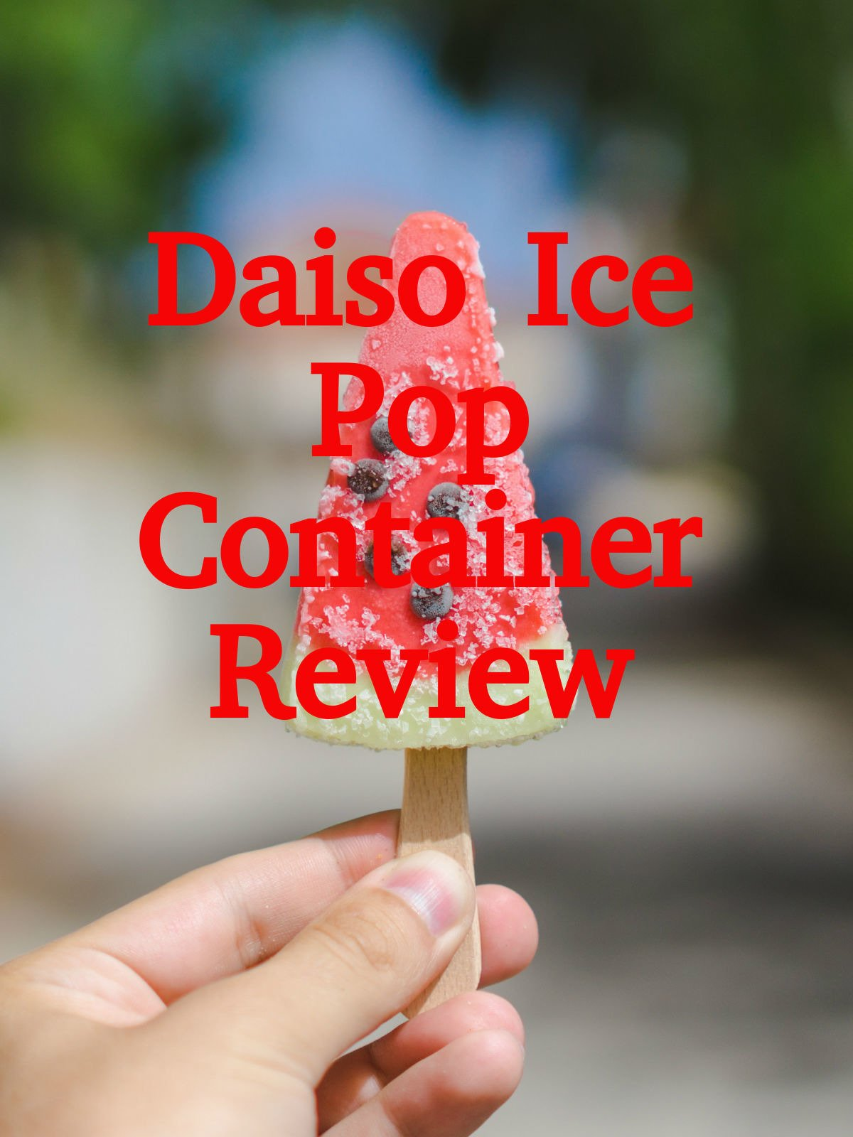 Review: Daiso Ice Pop Container Review
