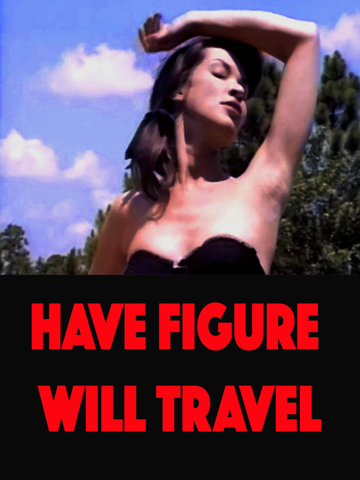 Have Figure Will Travel