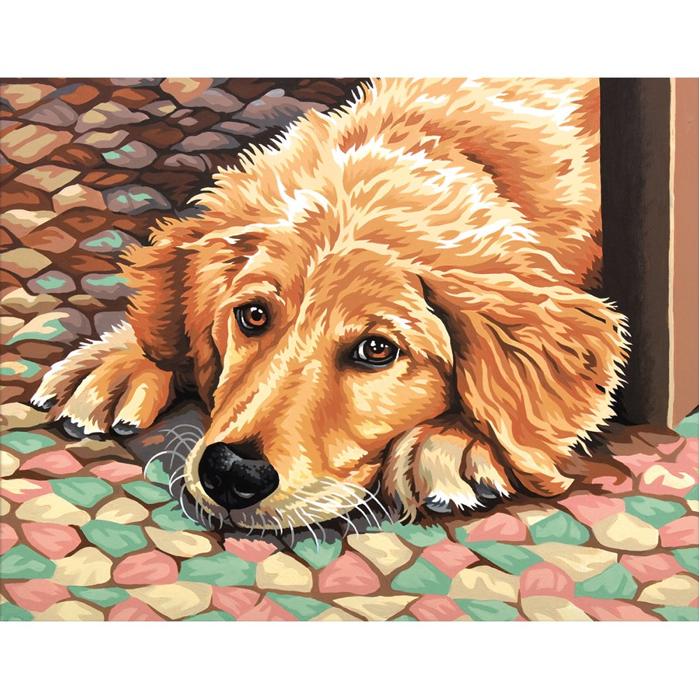 11x14 Paint by Number Kit, Dog Tired