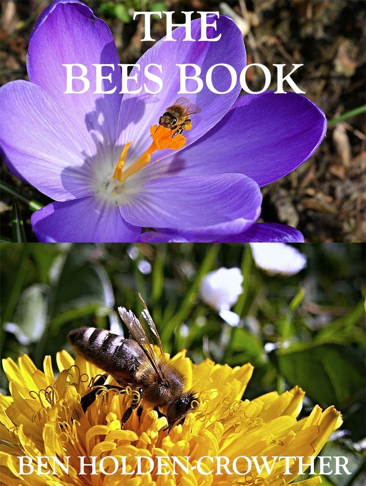 The Bees Book (HC Picture Book Series 18), Ben Holden-Crowther ...