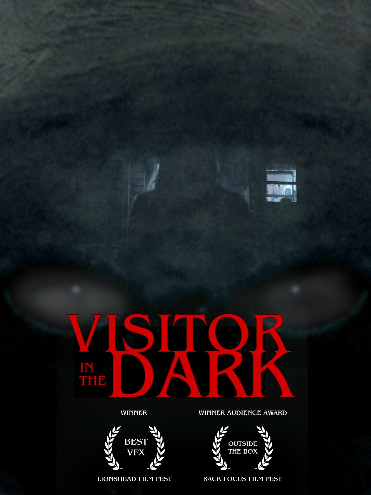 Visitor in the Dark