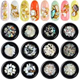 12 Boxes Nail Art Crushed Shell Seashell Set, Tingbeauty Nail Art Natural Abalone Shell Nail Decals 3D Nail Art Decoration Kit for 3D Manicures Beauty Salon Nail Decals Tools (Tamaño: 12 Boxes)
