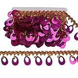 MELADY Pack of 10yards Sequins Pagoda Hanging Bell Tassel Lace Dance Clothing Accessories Fringe Trim (Rose) (Color: rose)