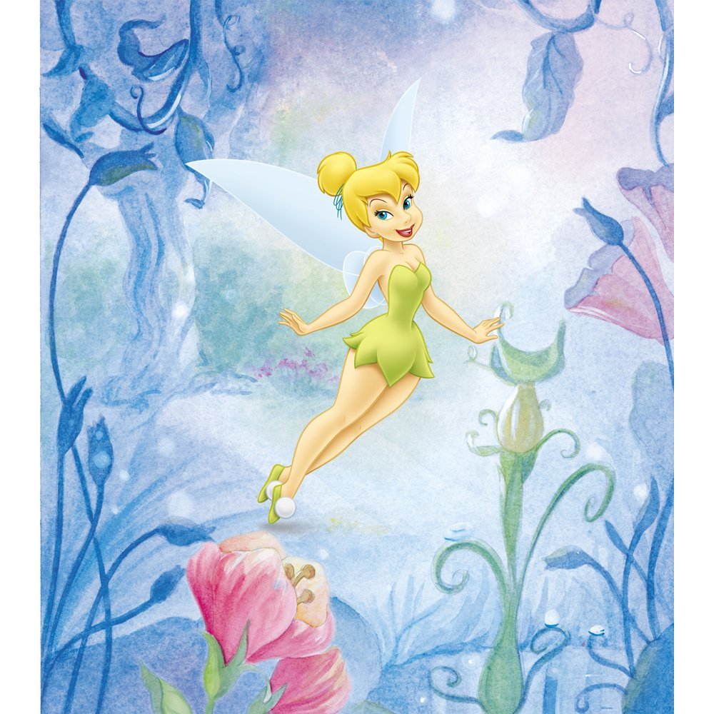 Tinker bell wall decals totally kids totally bedrooms for Disney fairies wall mural