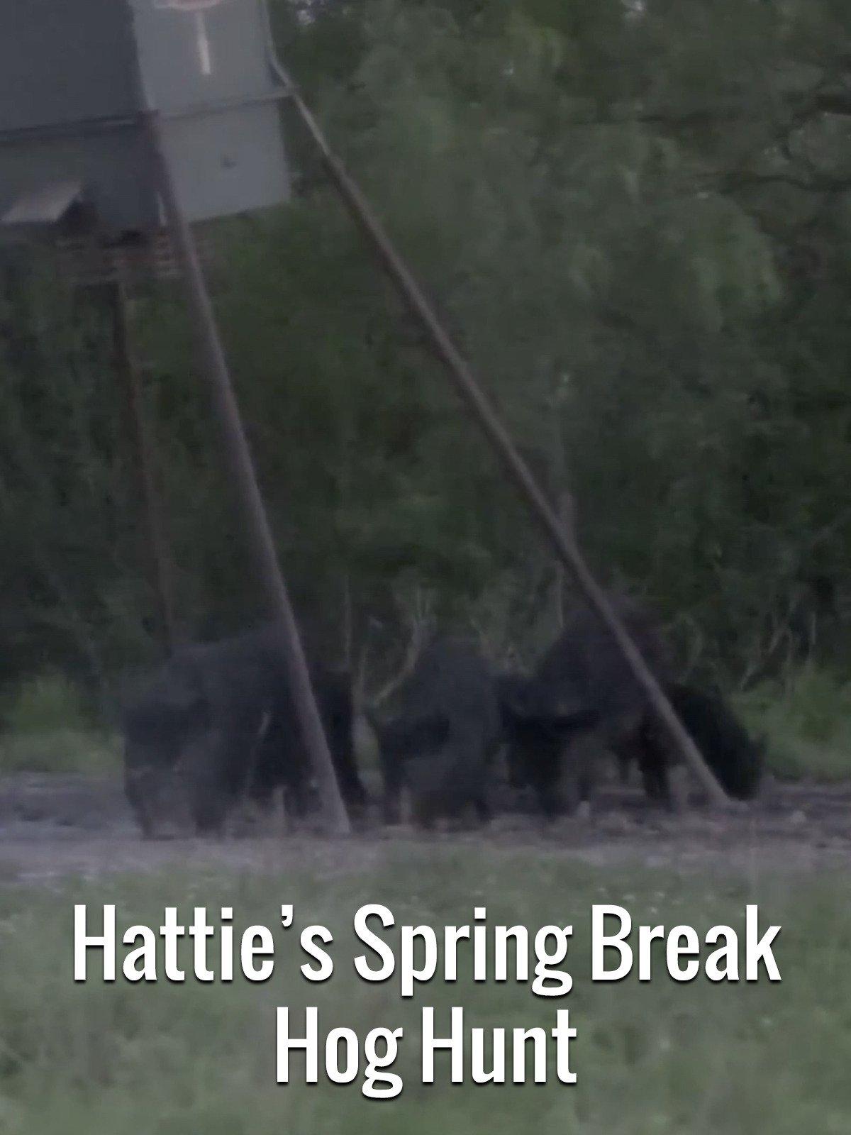 Hattie's Spring Break Hog Hunt