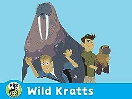 Wild Kratts Volume 9