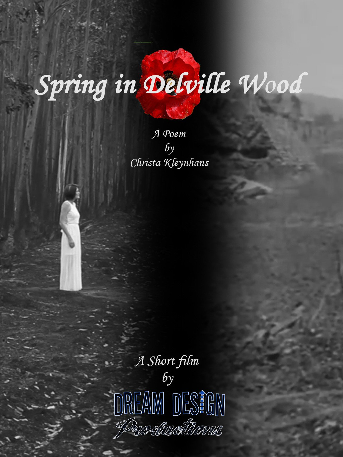 Spring in Delville Wood