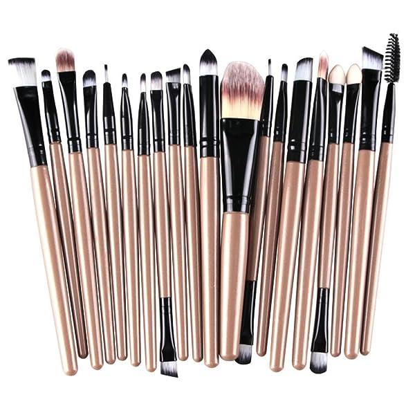 KOLIGHT 20 Pcs Pro Makeup Set Powder Foundation Eyeshadow Eyeliner Lip Cosmetic Brushes (Black?)