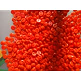 Lyracces Wholesale Lots 1000pcs Mini Small Dot Baby Craft DIY Sewing Fasteners Flatback Resin Buttons 5mm (Orange) (Color: Orange)
