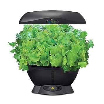 New Sealed AeroGarden Gourmet Herb Seed Pod Kit 3 Pods