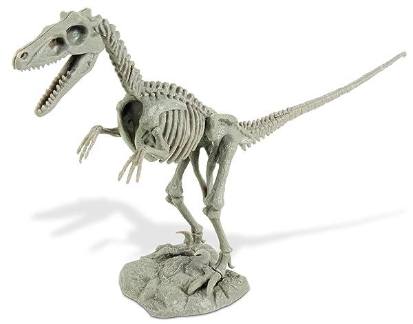NEW Geoworld Velociraptor Skeleton Excavation Dig It Out /& Build Kit