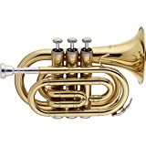 Stagg WS - TR245 Bb Pocket Trumpet with Case (Tamaño: 6.00 x 3.00 x 8.00 inches)