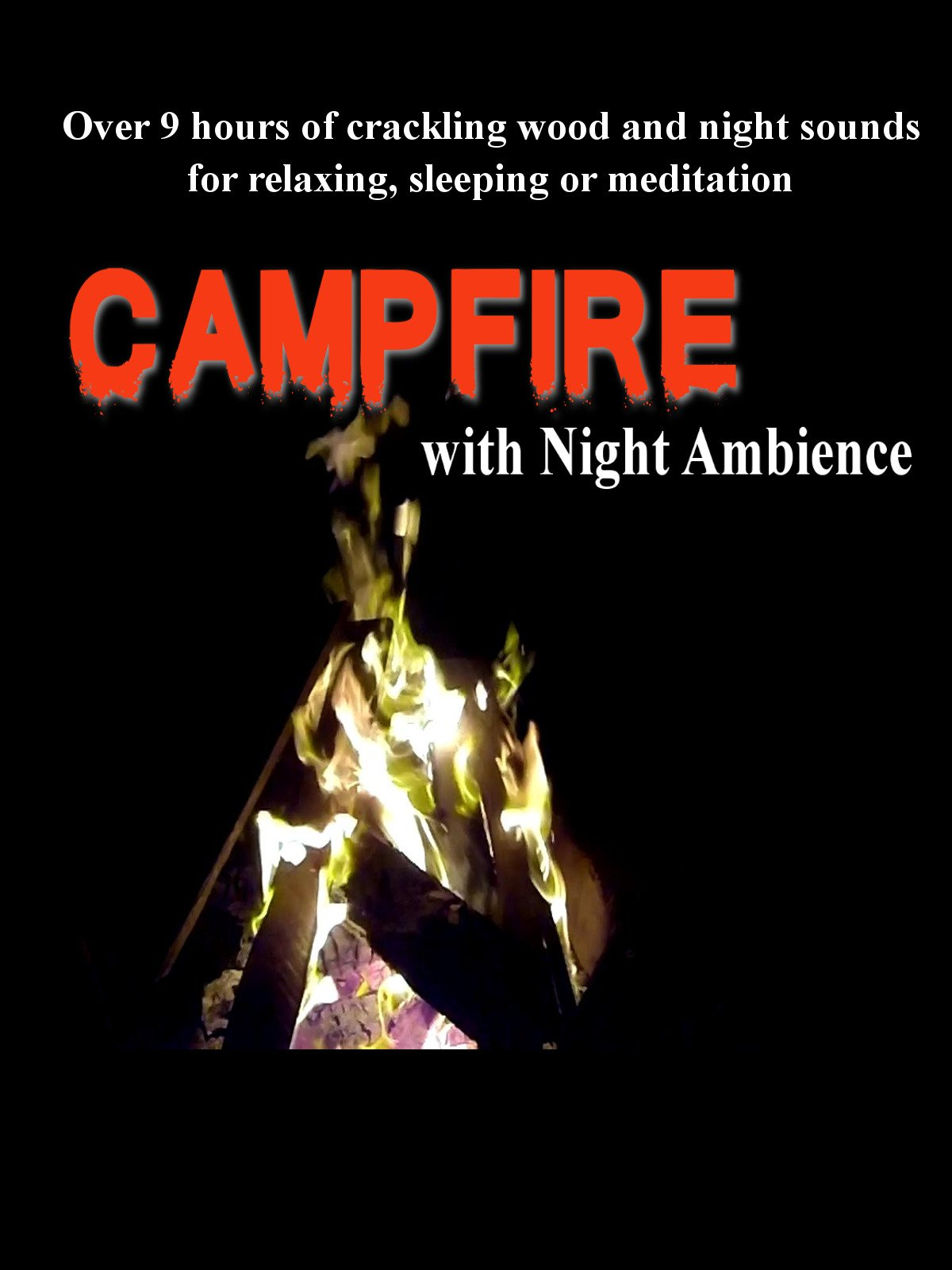 Campfire with night ambience
