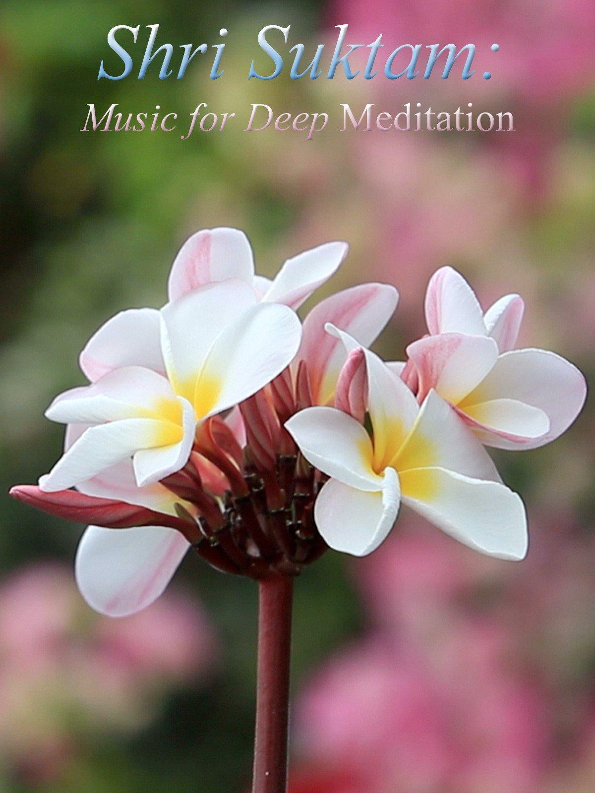 Shri Suktam: Music for Deep Meditation