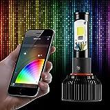 H11 2in1 LED Headlight Bulb Kit - XKchrome Smartphone App-enabled Bluetooth RGB Devil Eye + LED Headlight Conversion