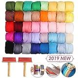 Jeteven Needle Felting Kit 40 Colors Wool Roving DIY with 2 Wool Felt Brushes (Tamaño: 40Color)
