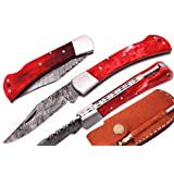Alkaswa Knives Pocket Knife Red Bone Handle 7.5'' Beautiful Damascus Steel Knife Steel Bloster Folding Knife Back Lock 100% Prime Quality with Sharpening Rod and Leather Sheath(d-252) (Color: Red)