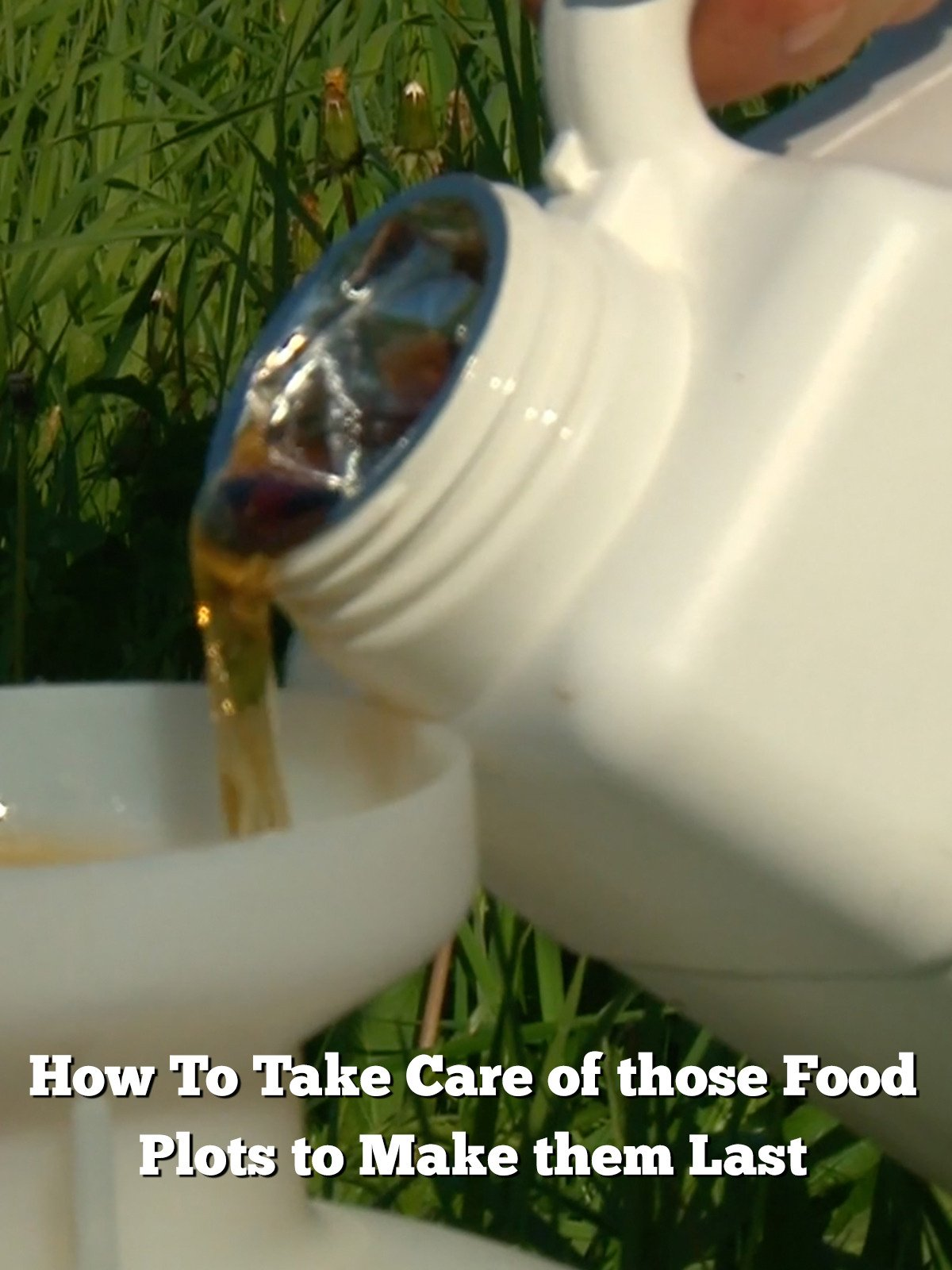 How To Take Care of those Food Plots to Make them Last