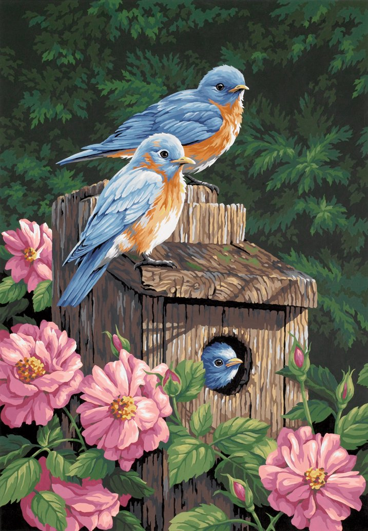 14x20 Paint By Number Kit, Garden Bluebirds