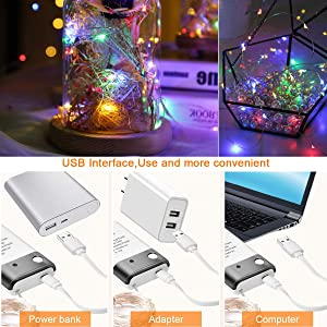 Areskey LED Fairy String Lights - 2 Pack 33ft 100 LED USB and Battery Powered Waterproof 8 Modes Remote Control Copper Wire Firefly Lights for Christm