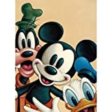 DIY 5D Diamond Painting by Number Kits, Crystal Rhinestone Diamond Embroidery Paintings Pictures Arts Craft for Home Wall Decor (Cartoon-w1963, 12x16inch) (Color: Cartoon-w1963, Tamaño: 12x16inch)