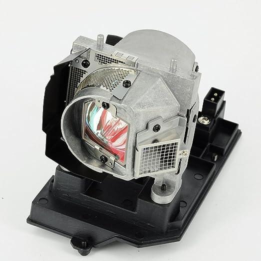 haiwo np19lp/60003129de haute qualité Ampoule de projecteur de remplacement compatible avec boîtier pour NEC U250X/U260W.