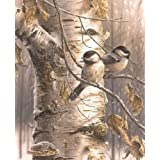 ABEUTY DIY Paint by Numbers for Adults Beginner - Birds on The Tree 16x20 inches Number Painting Anti Stress Toys (Wooden Framed) (Color: Birds, Tamaño: Wooden Framed)