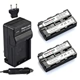 Newmowa NP-F550 Battery (2-Pack) and Charger kit for Sony NP-F330,F550,F570 and Sony CCD-SC55,TR516,TR716,TR818,TR910,TR917 Camera (Tamaño: 2*NPF550 Battery + 1* Charger)
