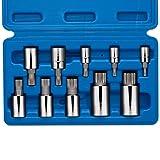 Neiko 10056A XZN Triple Square Spline Bit Socket Set, S2 Steel   10-Piece Set   Metric 4mm – 18mm