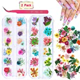 2 Boxes Dried Flowers for Nail Art, KISSBUTY 24 Colors Dry Flowers Mini Real Natural Flowers Nail Art Supplies 3D Applique Nail Decoration Sticker for Tips Manicure Decor (Gypsophila Flowers Leaves) (Color: Gypsophila Flowers Leaves)