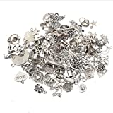 100-Piece Mega Mixed Pendants Jewelry Charms DIY for Necklace Bracelets Bangle Chain Jewelry Making and Crafting (Color: silver)