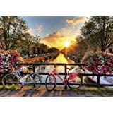 ABEUTY DIY Paint by Numbers for Adults Beginner - Amsterdam Sunrise 16x20 inches Number Painting Anti Stress Toys (Wooden Framed) (Color: Amsterdam, Tamaño: Wooden Framed)